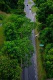 El camino en Singapur allí es árboles a lo largo del camino Imagen de archivo