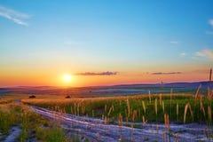 El camino en un campo de trigo Puesta del sol Imagen de archivo libre de regalías