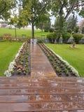 El camino florece la lluvia del parque Fotografía de archivo libre de regalías