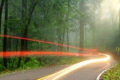 El camino forestal por mañana de niebla temprana con el sol visible irradia imágenes de archivo libres de regalías