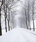 El camino del invierno Fotos de archivo