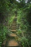 El camino para arriba Fotografía de archivo libre de regalías