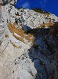 El camino para arriba en la montaña Fotografía de archivo