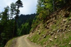 El camino para los coches que pasan una montaña grande en el fondo de un bosque de la montaña fotos de archivo