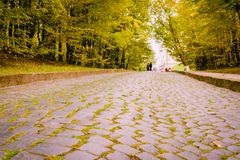 El camino pavimentado va abajo a la parte inferior cuyo las mentiras la manzana amarilla se van Fotos de archivo