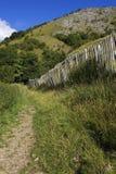 El camino que recorría alineó por la cerca de piquete en el districto máximo inglés Imagen de archivo
