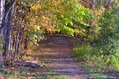El camino que recorre Foto de archivo libre de regalías