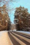 El camino a través del bosque en invierno Imágenes de archivo libres de regalías