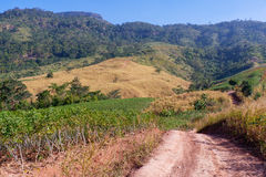 El camino va a la montaña Fotos de archivo libres de regalías