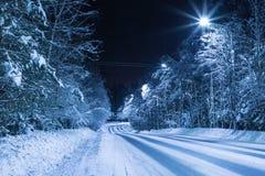 El camino vacío de la noche en el bosque entre los árboles del abeto y de pino fotografía de archivo