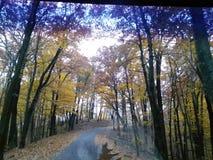 El camino viajó menos Imagen de archivo