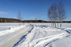 El camino y los abedules de la nieve en el pueblo outskirts Fotografía de archivo libre de regalías