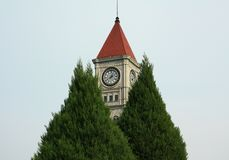 El campanario y el árbol fotos de archivo libres de regalías