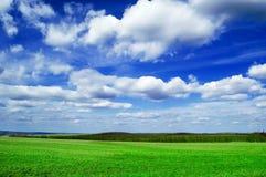 El campo. Imagen de archivo libre de regalías