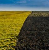 El campo aró mitad con el suelo en un lado y la hierba en otro - división y límite fotografía de archivo libre de regalías