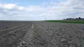 El campo arado, alista para sembrar Fotografía de archivo libre de regalías