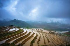 El campo colgante del arroz en la estación del agua, el tiempo antes de comenzar produce el arroz en Y Ty, provincia de Lao Cai,  imagen de archivo