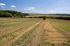 El campo coloca paisaje Imagen de archivo libre de regalías