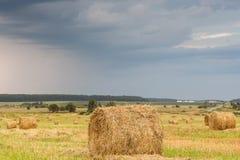 El campo con la paja rueda en un día de verano Foto de archivo