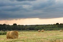 El campo con la paja rueda en un día de verano Imagen de archivo libre de regalías