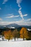 El campo con otoño coloreó árboles cubiertos con la primera nieve Imagenes de archivo