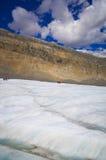 El campo de hielo de Columbia en las montañas rocosas canadienses, y la vista del glaciar Fotos de archivo