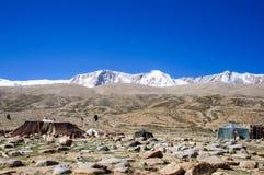 El campo de los nómadas de Changpa, valle de Changthang, Ladakh, la India Fotos de archivo libres de regalías