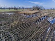El campo de maíz es afectado por la sequedad de la sequía en invierno fotos de archivo