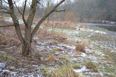 El campo de nieve Fotos de archivo libres de regalías