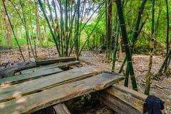 El campo del patio trasero en Tailandia Fotos de archivo libres de regalías