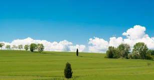 El campo verde en Cortona, Toscana Fotos de archivo