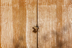El candado retro en puerta de madera en el campo, concepto de secu Imagen de archivo
