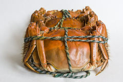 El cangrejo delicioso cuidadosamente dispuesto Fotos de archivo