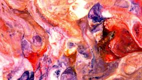 El caos grande de la explosión de la tinta del grunge colorido del modelo se separó en débil metrajes