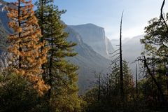 EL Capitain, Yosemite Photographie stock