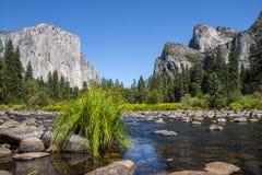 El Capitan山在有creeck和gr的约塞米蒂国家公园 库存照片