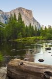 EL Capitan, εθνικό πάρκο Yosemite Στοκ Εικόνες