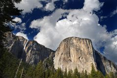 El capitan Royalty Free Stock Photo
