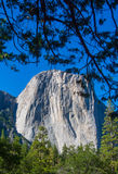 EL Capitan Images stock