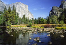 EL Capitan che riflette nel fiume di Merced in Yosemite Immagine Stock Libera da Diritti
