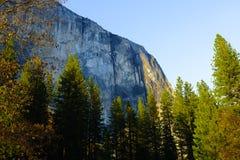 EL Capitan e caduta di Hosetail in parco nazionale di Yosemite in primavera Immagini Stock Libere da Diritti
