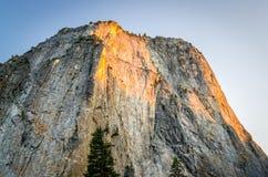 El Capitan i den Yosemite nationalparken Royaltyfria Bilder