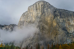 El Capitan Meadow with tall yellow grass. At Yosemite National Park Royalty Free Stock Photography