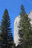 El Capitan Mountain Landscape Yosemite National Park Stock Photography