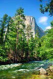 EL Capitan, parque nacional de Yosemite foto de stock