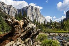 EL Capitan, parque nacional de Yosemite, California, los E.E.U.U. foto de archivo