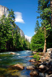 EL Capitan, sosta nazionale del Yosemite fotografia stock libera da diritti