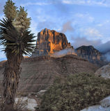 El Capitan At Sunrise Stock Photography