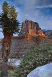 El Capitan At Sunrise Royalty Free Stock Photo