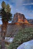 El Capitan At Sunrise Royalty Free Stock Photo